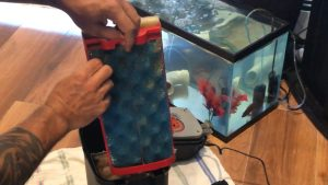 How to clean sponges in fluval 407 filter